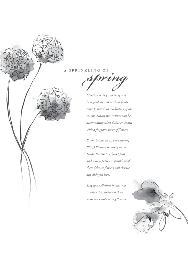 Singapore Airlines Flight Menu with TBWA. Dushi Buttons and BlinQ Blossoms